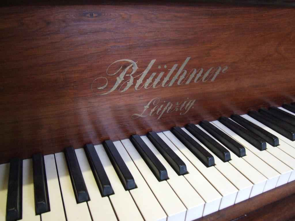 Photo of Bluthner  Style 7 Grand piano