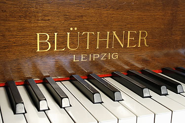 Photo of Bluthner 5 Grand piano