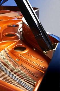 Feurich Grand piano soundboard