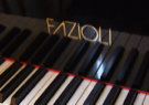 fazioli pianos Top makes of used pianos
