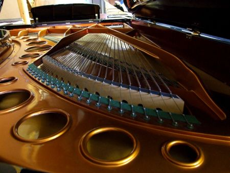 Bosendorfer Piano. Bosendorfer pianos for sale