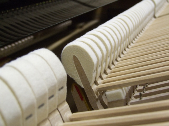 hammers inside a yamaha upright action