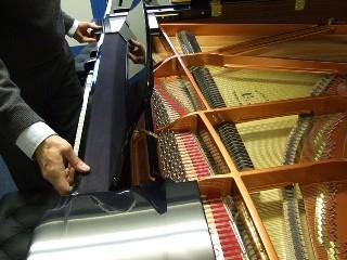 wendl lung 161 music-desk