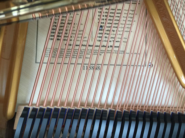 bluthner serial numbers location on a grand piano