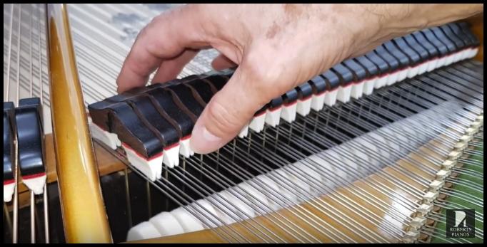 Damper height bechstein grand piano